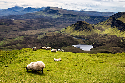 Trotternish Ridge auf Skye